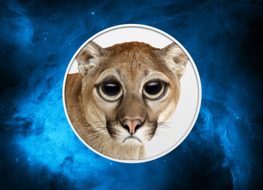 mountain-lion-traurig