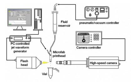 Biodrucker_-Struktur-Druck-Augenzellen